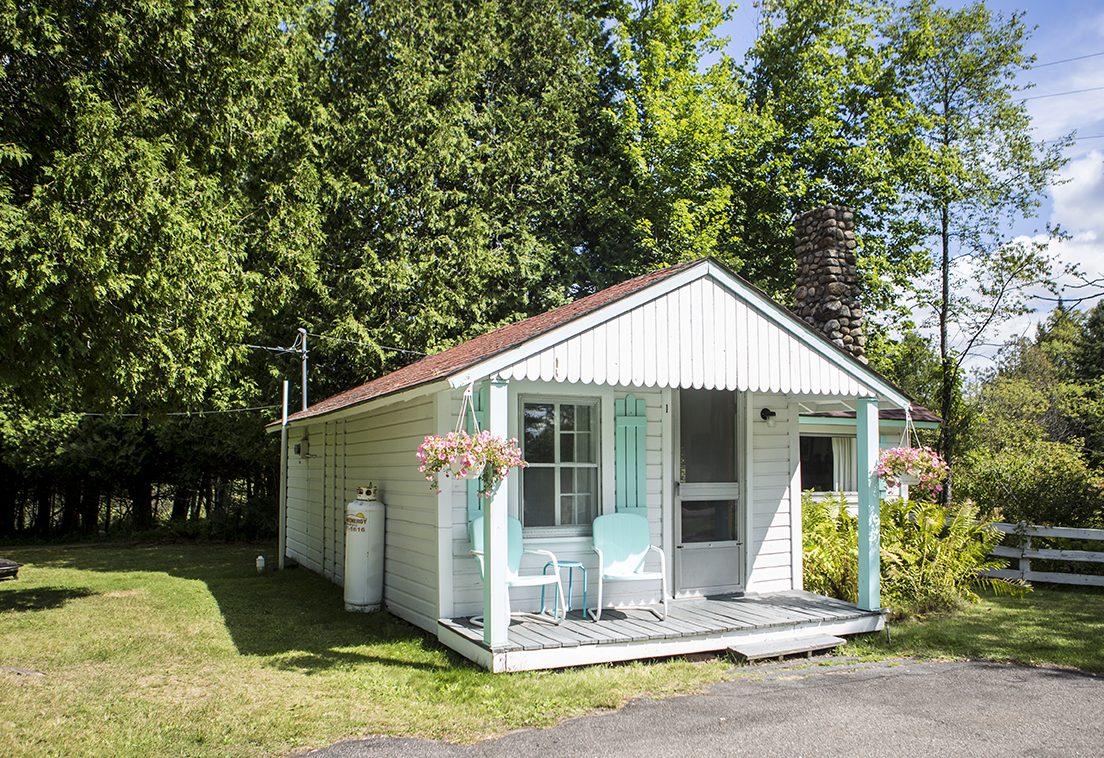 Adirondack Cabin 1